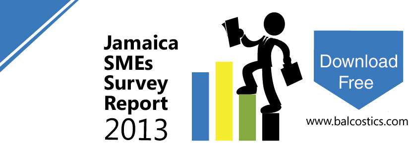 Jamaica SMEs Survey download